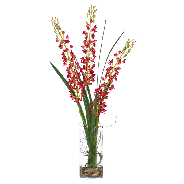 Hanging Mini Cymbidium Cylinder Waterlike