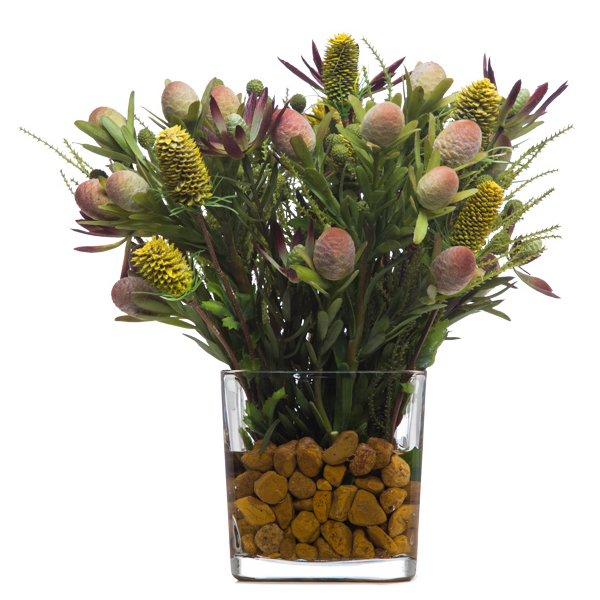 Protea Waterlike