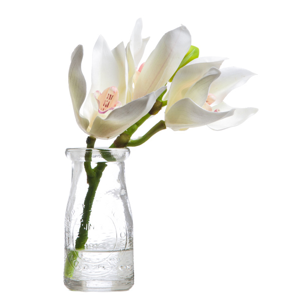 White Cymbidium in Milk Bottle Vase Waterlike