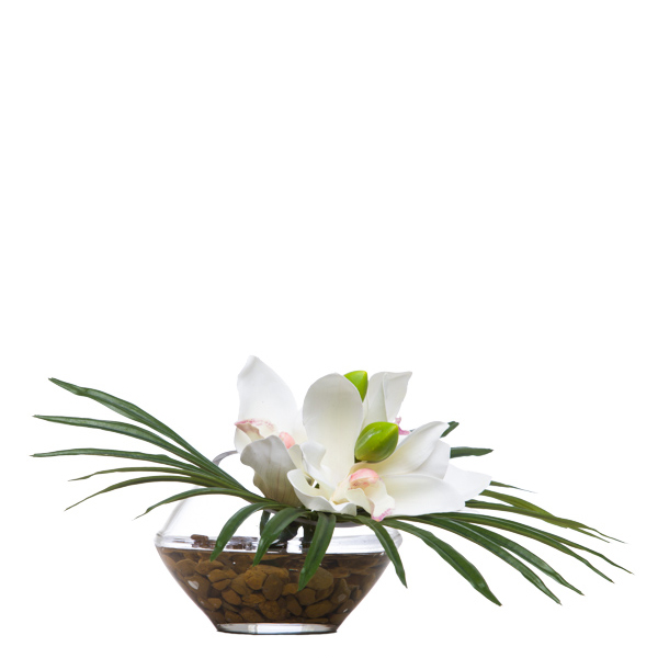 White Cymbidium/Fan Palm Waterlike