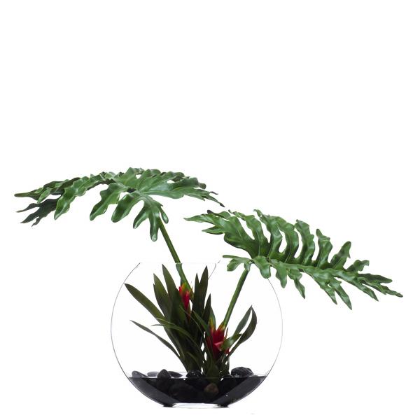 Selloum/Bromeliad Waterlike
