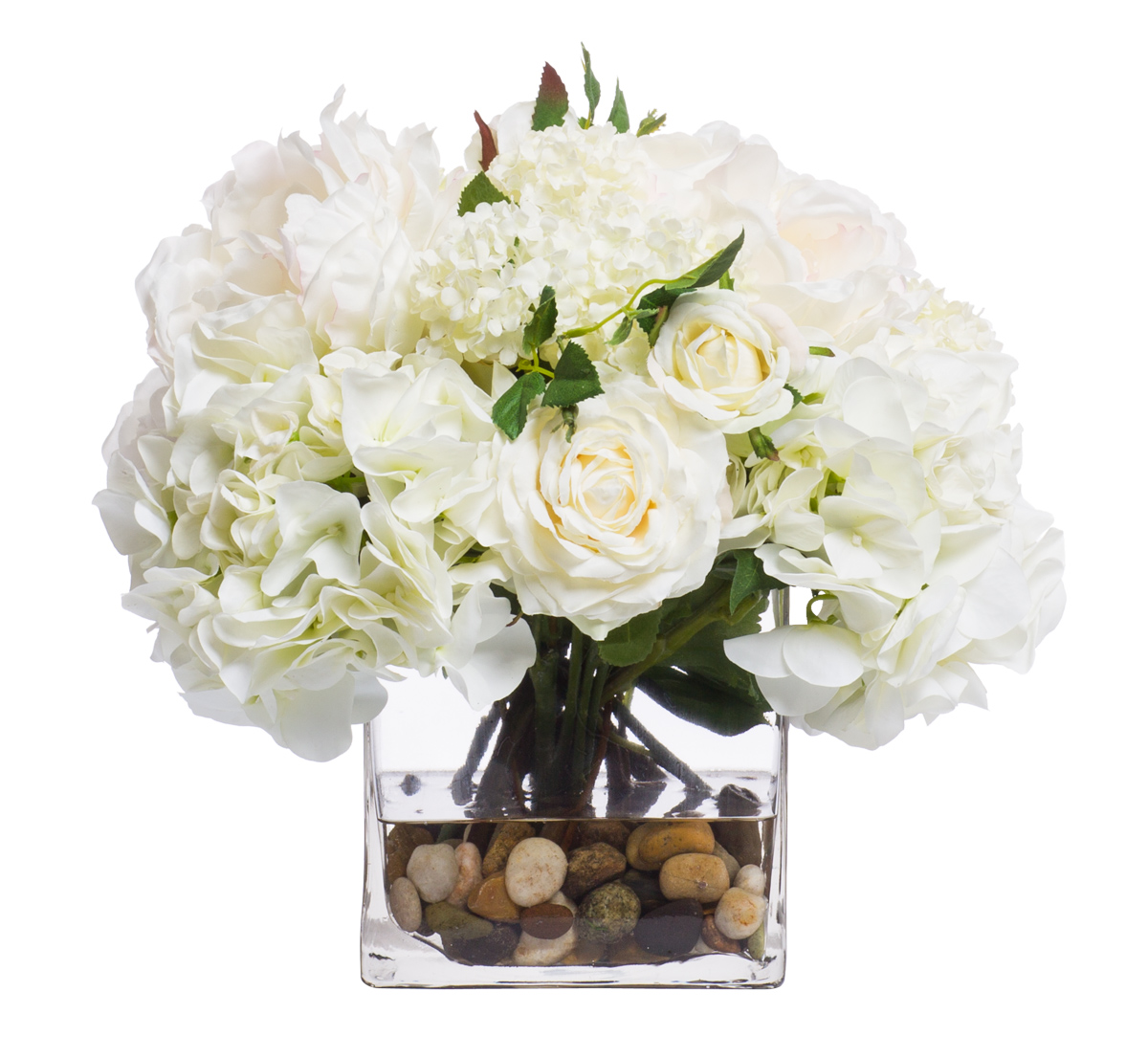 White / Cream Hydrangea in 6