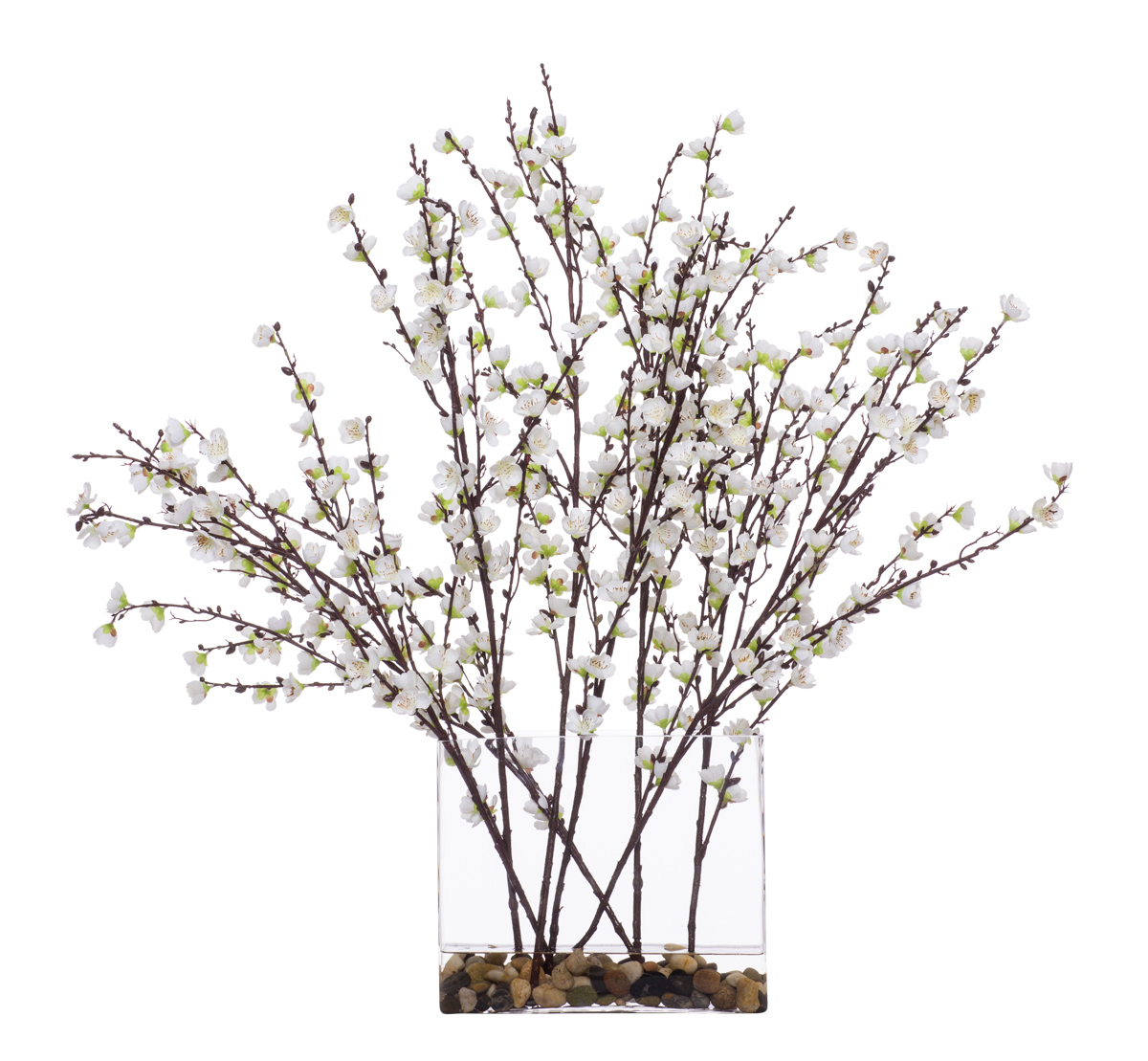 White Plum Blossom in Rectangle Glass Waterlike