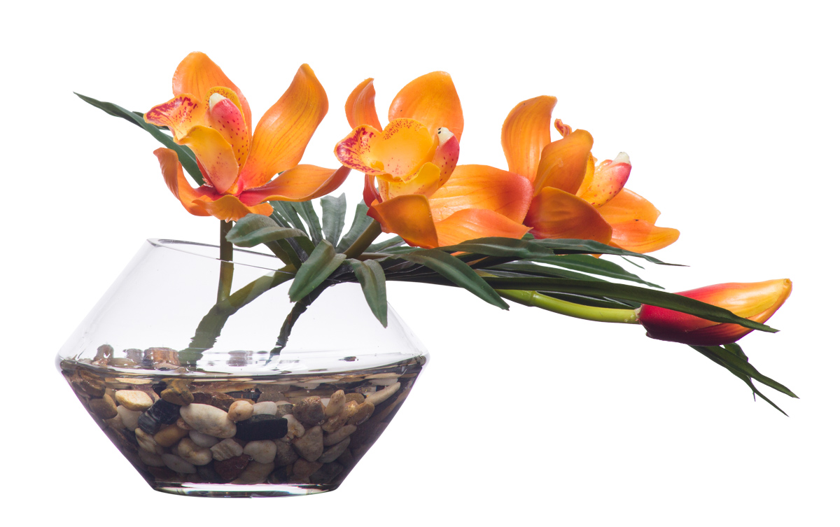 Orange Cymbidium in Cut Vase Waterlike
