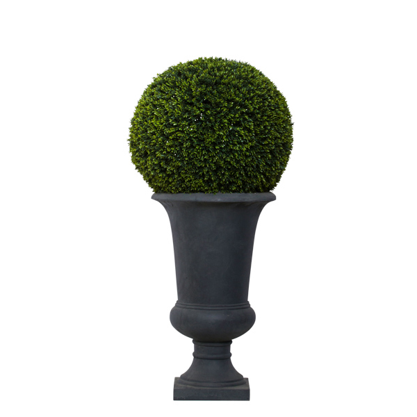 Lg. Mini Boxwood Ball in Grey Urn