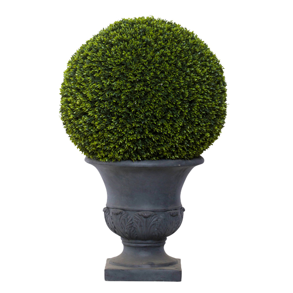Large Mini Boxwood Ball in Gray Classic Urn