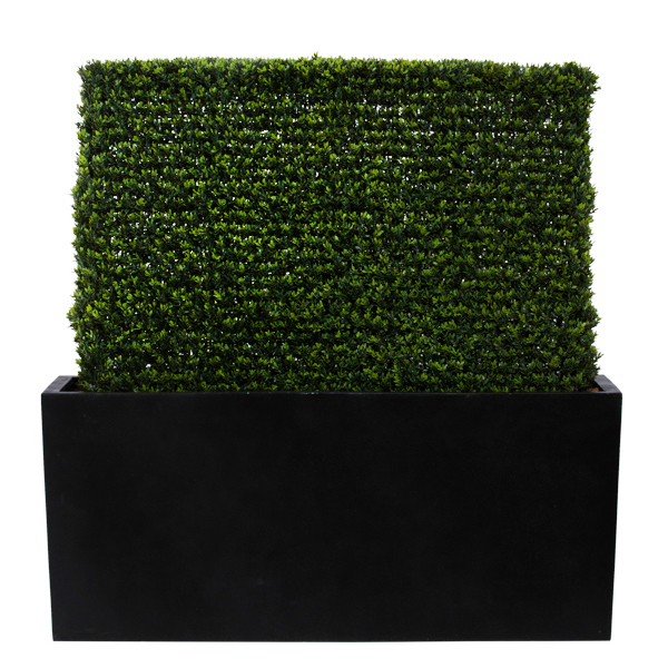Mini Boxwood Hedge Planter Box