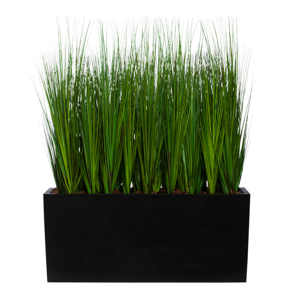 Grass in Planter Box