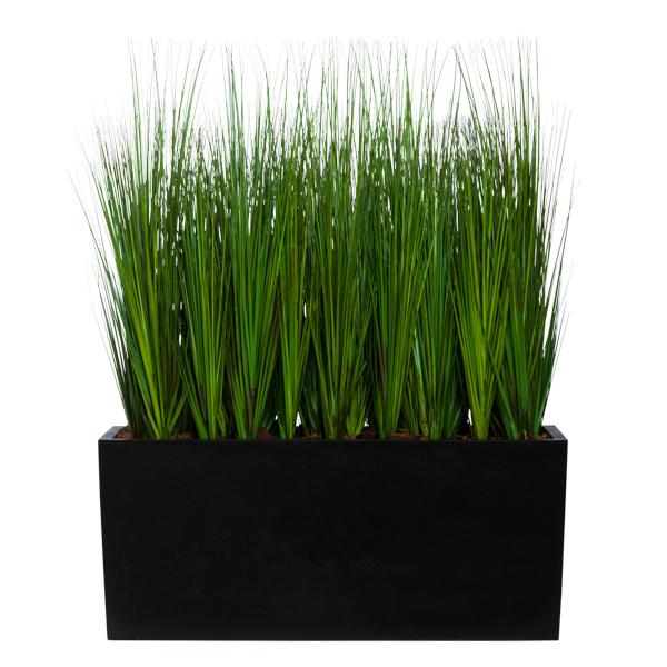 Grass in Planter Box