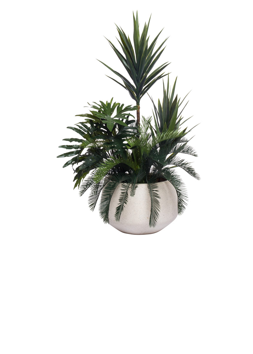 YUCCA COMBINATION IN WHITE TERRAZZO SQUATE POT