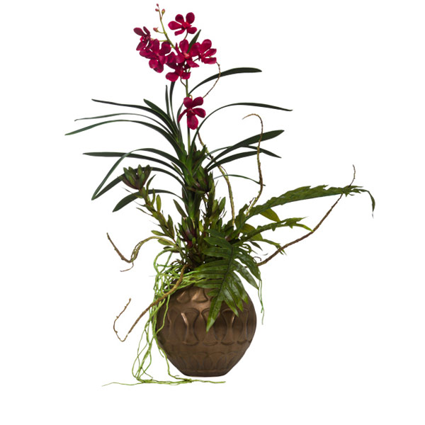 Vanda in Copper Ball