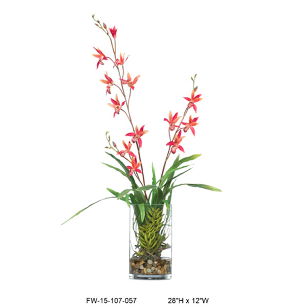 Red Dendrobium in Cylinder Waterlike