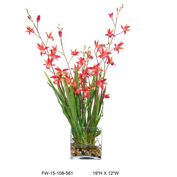 Red Dendrobium Waterlike