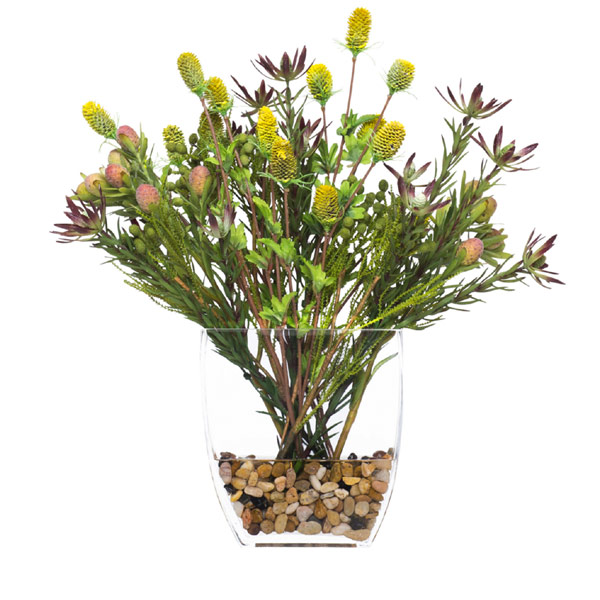 Protea in Vase Waterlike