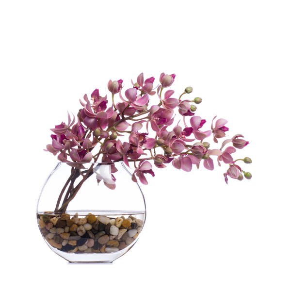 LT FUSCHIA MINI PHAL WATER LIKE