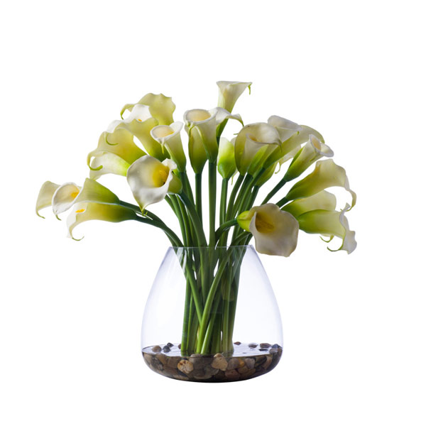 CREAM CALLA LILY WATER LIKE