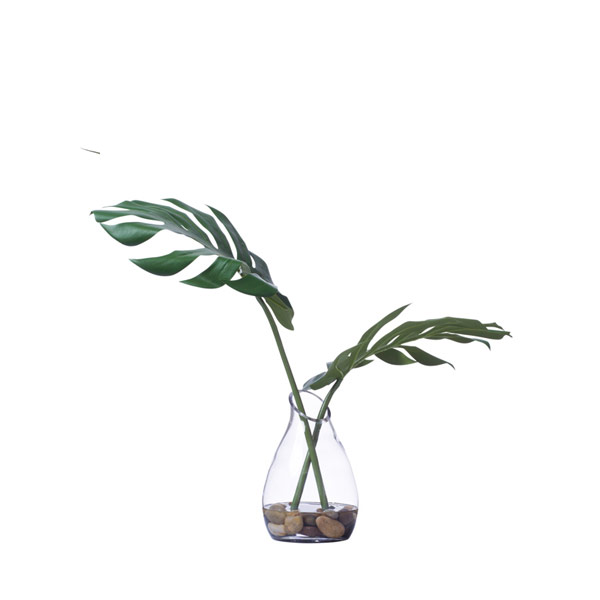 MONSTERA LEAF WATER LIKE