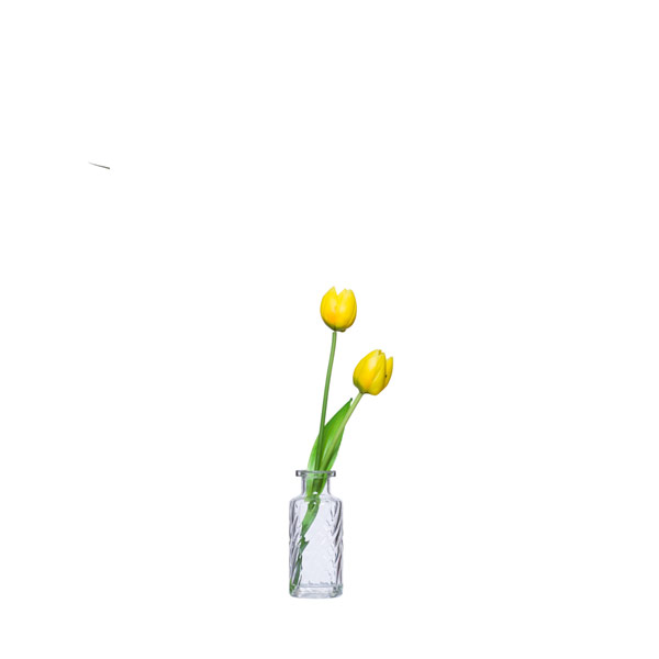 YELLOW TULIP WATER LIKE