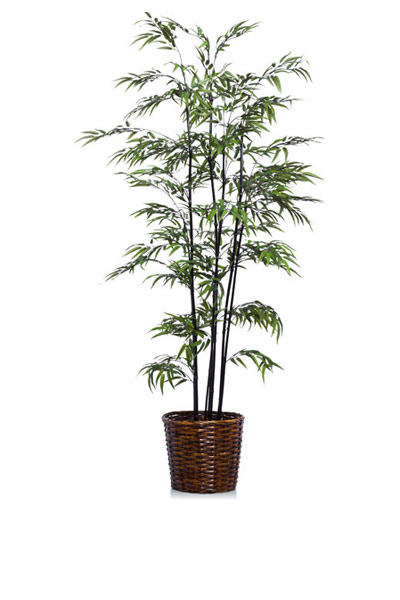 7' BLACK BAMBOO/BASKET