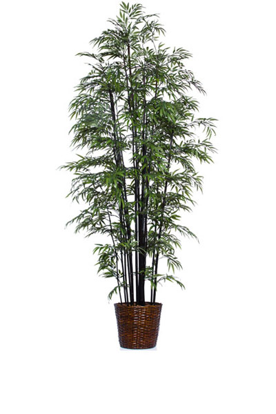 9.5' DELUXE BLACK BAMBOO/BASKET