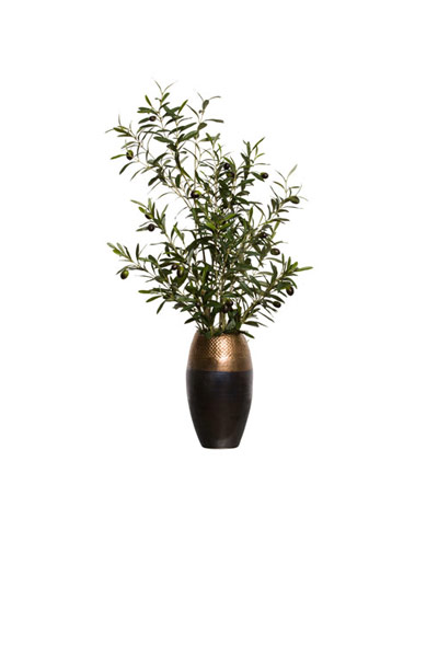 OLIVE BRANCH IN BRONZE POT