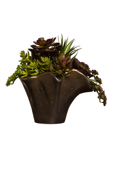 MIXED SUCCULENTS IN SM COPPER VASE