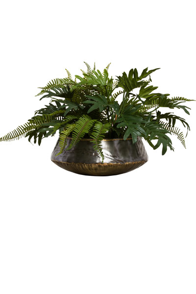 SELLOUM/FERN IN LG BENGAL  BOWL