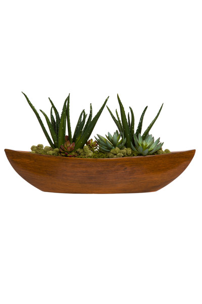 ALOE/SUCCULENTS IN BROWN BOAT