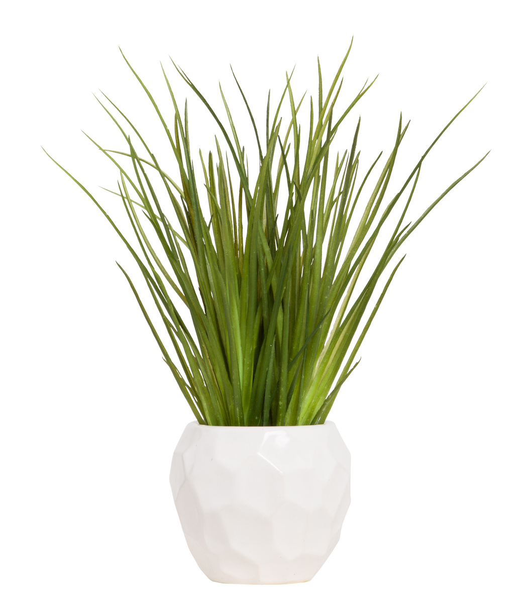 GRASS IN WHITE CHIP POT