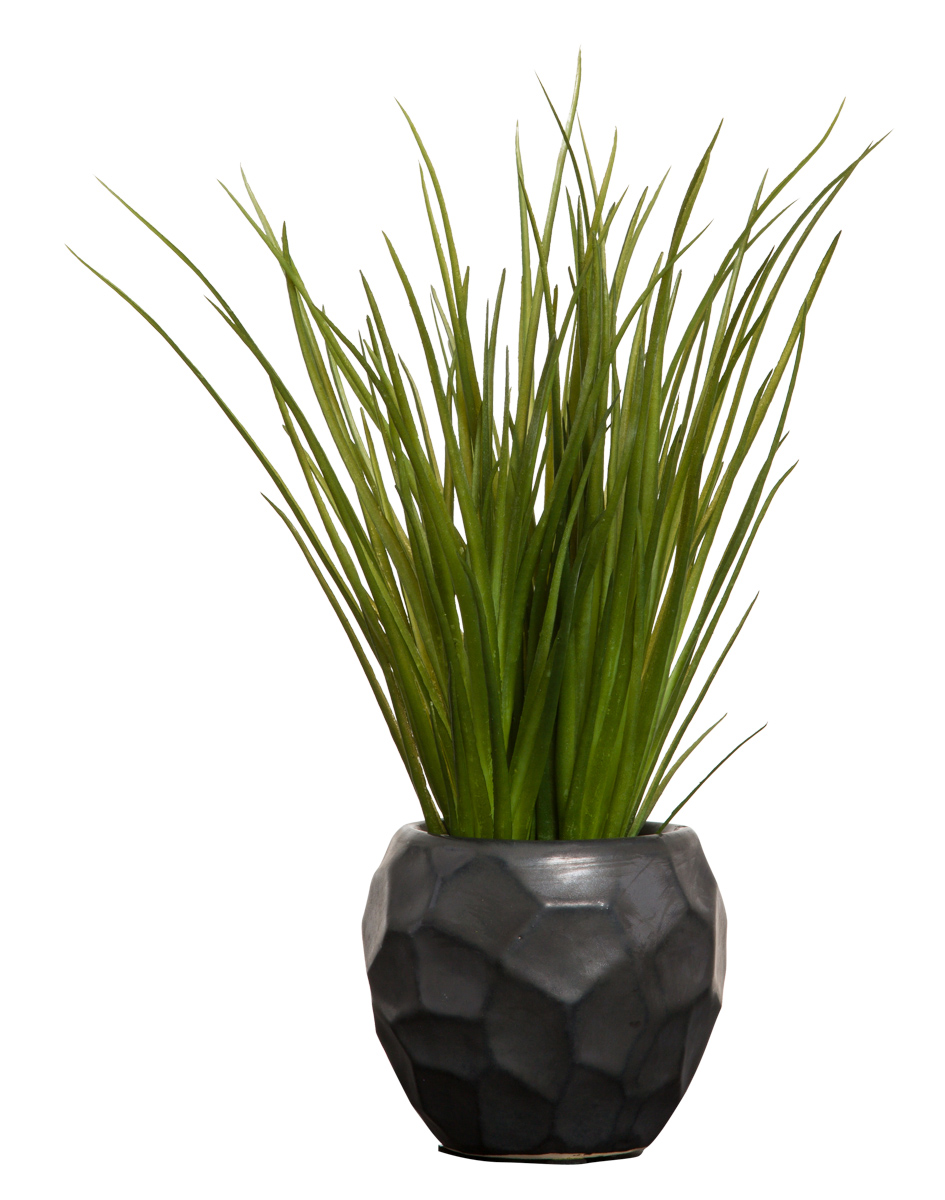 GRASS IN BLACK CHIP POT
