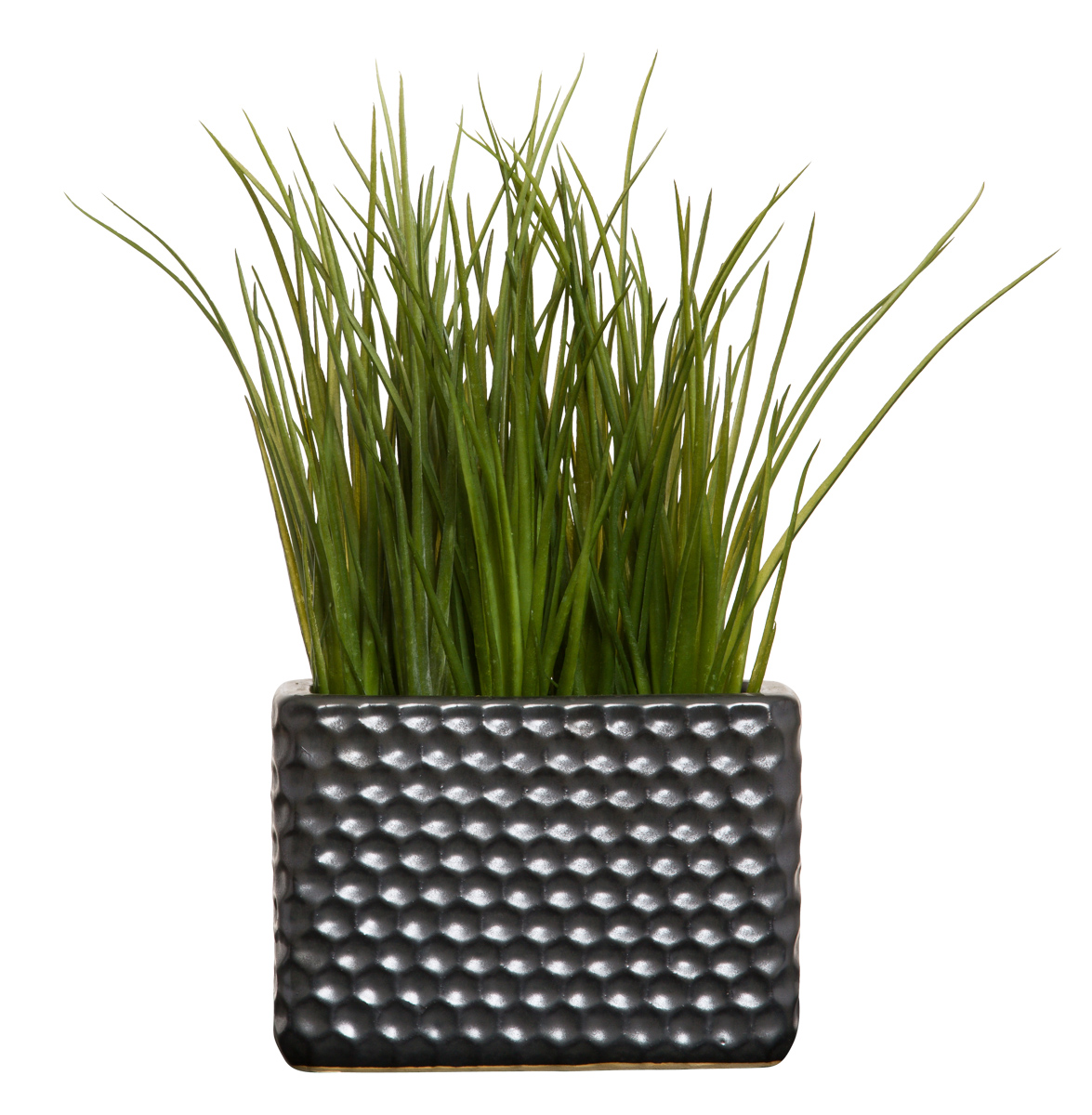 GRASS IN BLACK DIMPLED POT
