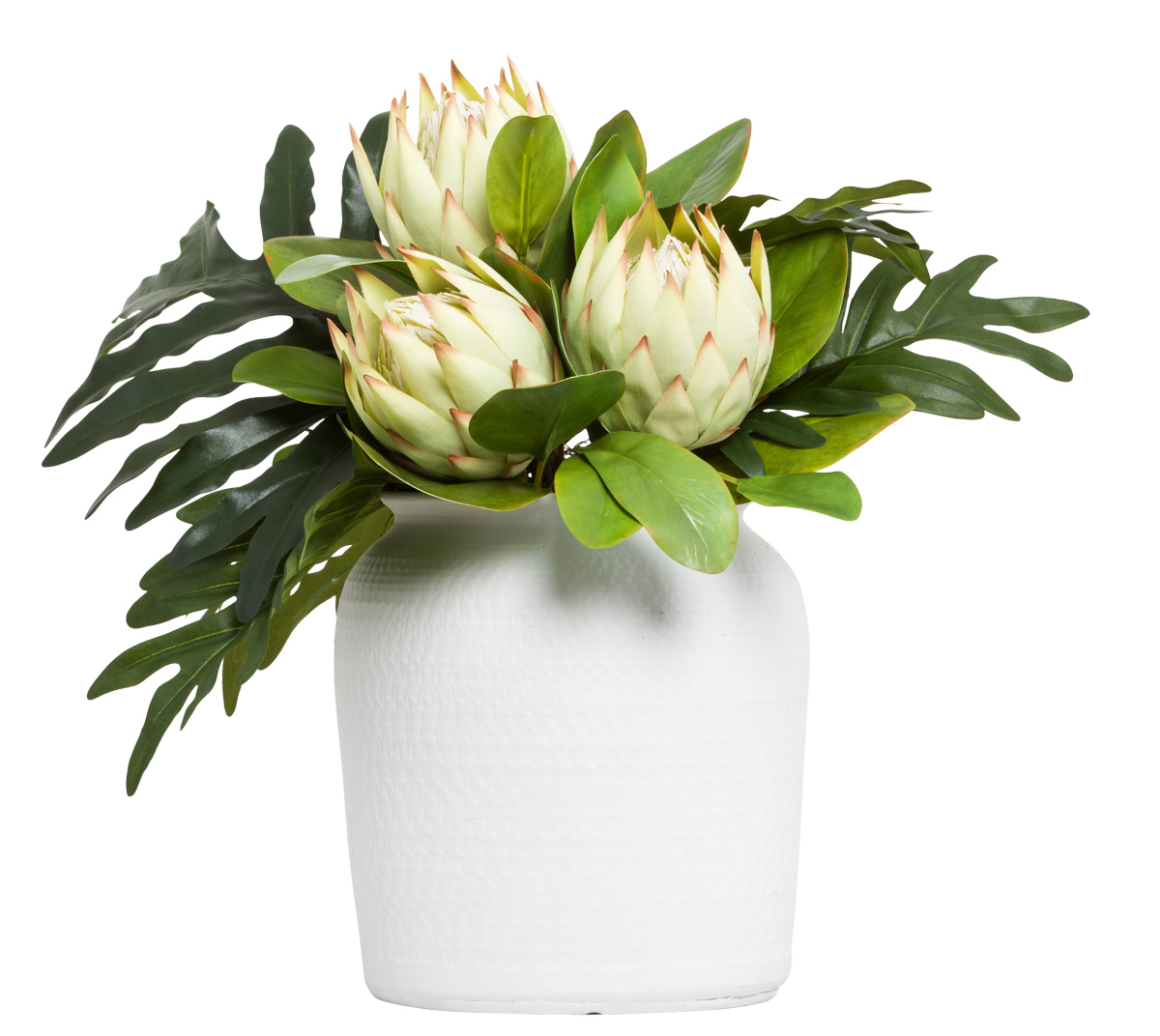 PROTEA/SELLOUM IN WHITE POT