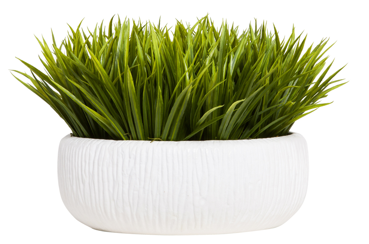 GRASS IN WHITE ROUND BOWL