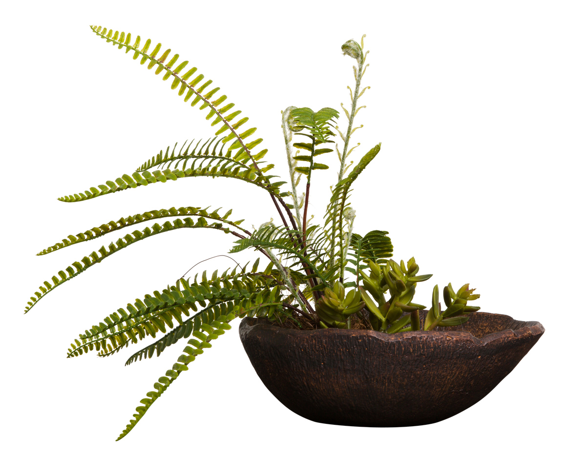FERN/SUCCULENT IN BRONZE BOWL