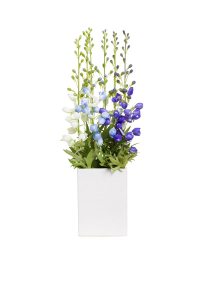 ASST DELPHINIUM IN WHITE PLANTER