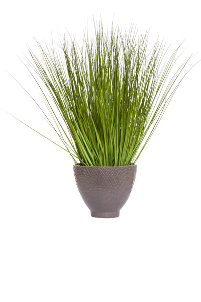 GRASS IN LARGE GREY POT