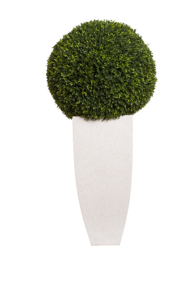 SMALL BOXWOOD BALL IN WHITE TERRRAZZO SQUARE POT