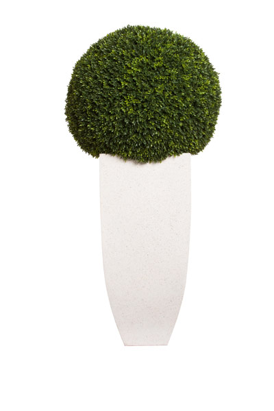 LARGE BOXWOOD BALL IN WHITE TERRAZZO SQUARE POT