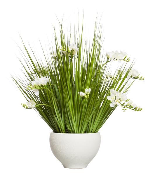 WHITE FREESIA/GRASS IN WHITE BOWL