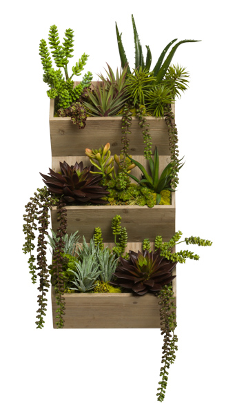 MIXED SUCCULENTS IN WOOD WALL POCKET