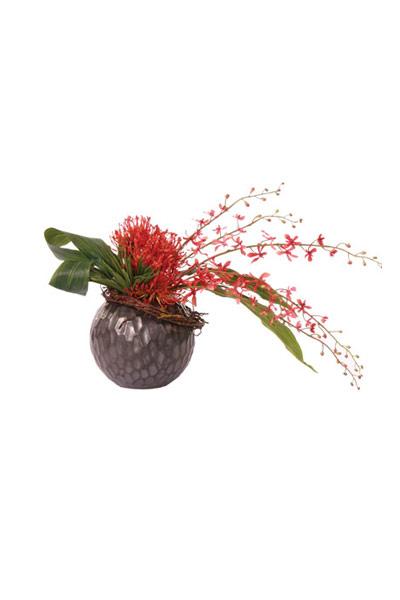 Pin Cushion / James Story Vanda in Black Ball Vase