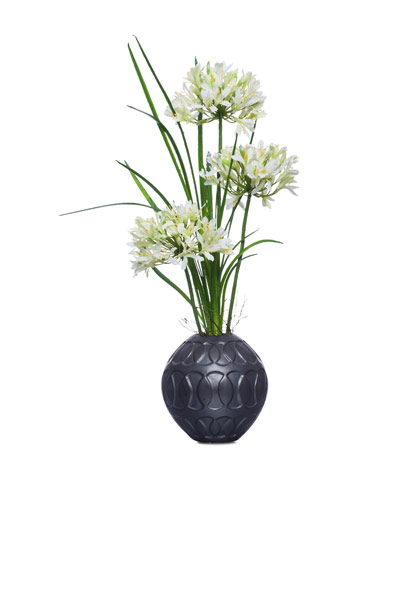 White Agapanthus in Black Ball Cont.