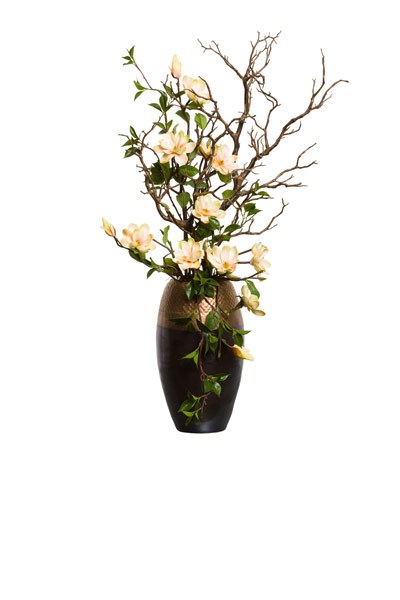 MANZINITTA/ MAGNOLIA IN TALL COPPER POT