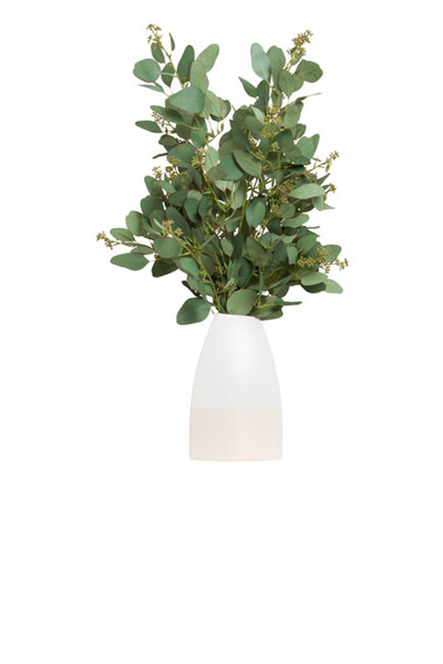 SEEDED EUCALYPTUS IN WHITE VASE