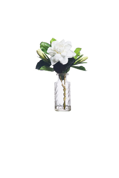 White Gardinia in Perfume Vase