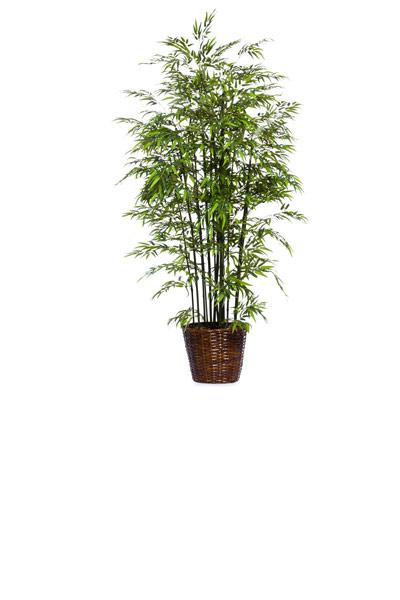 8.5' DELUXE GREEN BAMBOO/BASKET