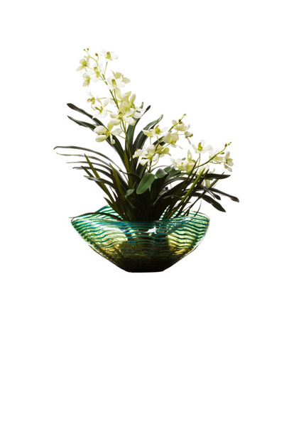 CREAM VANDA IN TURQUOISE BOWL