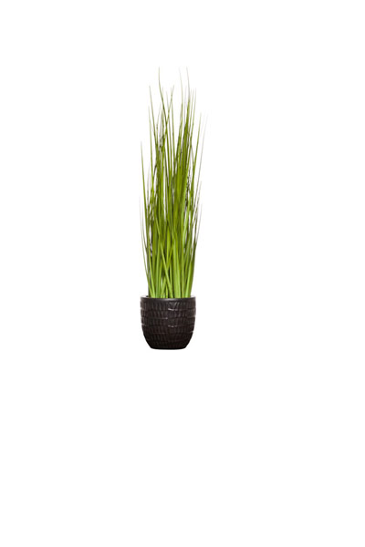 GRASS IN MATTE BLACK METALIC POT