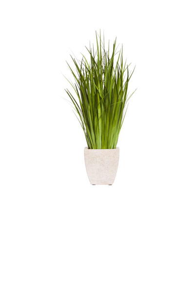 GRASS IN SQUARE POT