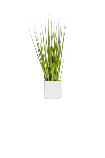 GRASS IN SMALL SQUARE POT